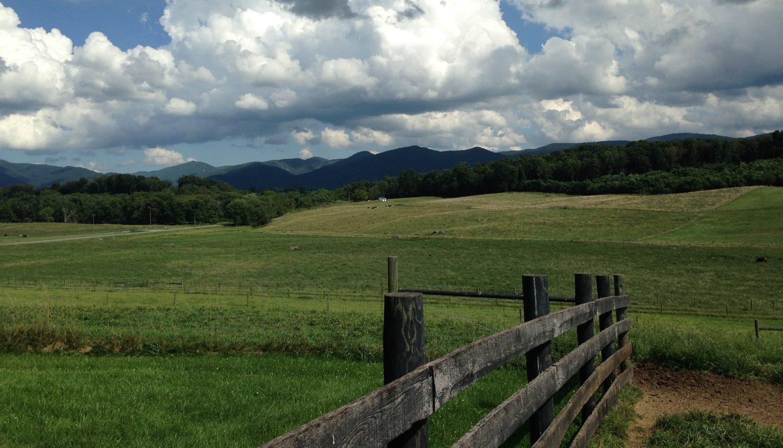 Pasture and mountain scene